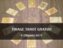 """tirage de carte gratuit en ligne Tirage de Carte Gratuit > Tarot & jeu de 52 cartes"""" title=""""tirage de carte gratuit en ligne Tirage de Carte Gratuit > Tarot & jeu de 52 cartes"""" width=""""500″ height=""""500″> </p> <p><P align=center><img src="""